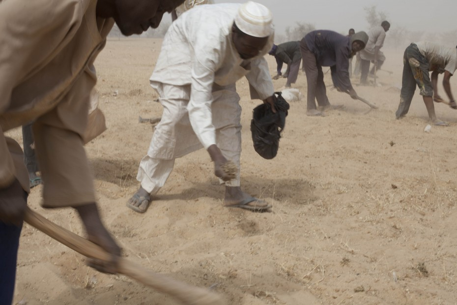 People remove weeds and plant pasture in Sarken Yamma (Tahoua region, Niger). This activity regenerates the land so the community can use it for grazing. With funding from ECHO/WFP, CARE is providing income to vulnerable families so they can buy food and repay their debts ahead of the lean season. People receive cash in exchange for part-time work in projects identified by their communities, or as a handout in the cases where nobody in the family is able to perform manual labour. Photo: CARE