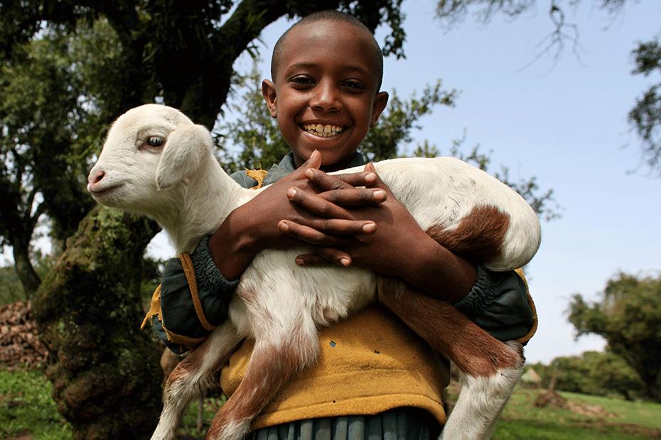 2013_ETH_WASH_JE_Nigist-and-Sheep_5