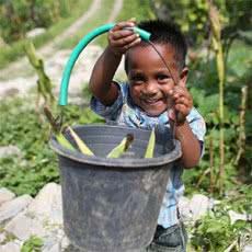 hunger-appeal-timor-leste-300-josh-estey