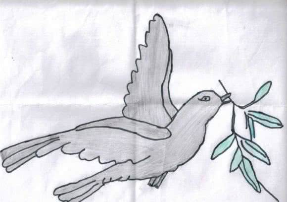 Riyad from Syria draws his hopes and dreams for Syria's future: a dove holding an olive branch.