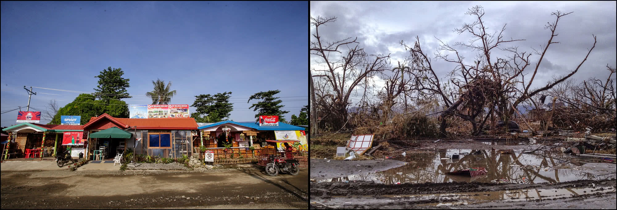 Typhoon Haiyan: before and after