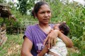 timor-leste-tax-desktop-slider