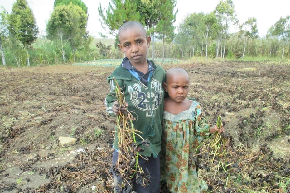 Children near frost-affected areas in Papua New Guinea.