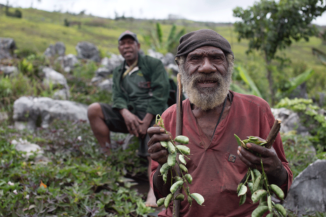 el-nino-appeal-930-png-elderly-man-holds-crops-4-png