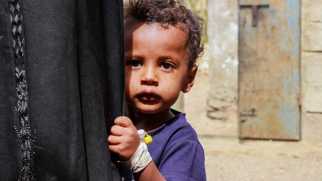 COVID-19: deadly new threat to the global hunger crisis